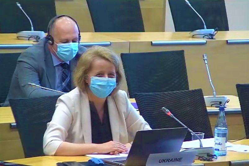 You are currently viewing Голову ДЕСС Олену Богдан обрано Віце-головою Керівного комітету Ради Європи з антидискримінації, розмаїття та інклюзії (CDADI)